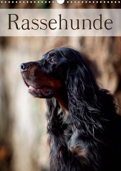 Rassehunde (Wandkalender 2021 DIN A3 hoch) von Noack,  Nicole