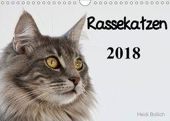 Rassekatzen 2018 (Wandkalender 2018 DIN A4 quer) von Bollich,  Heidi