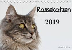 Rassekatzen 2019 (Tischkalender 2019 DIN A5 quer) von Bollich,  Heidi