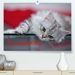 Rassekatzen (Premium, hochwertiger DIN A2 Wandkalender 2020, Kunstdruck in Hochglanz) von Viola,  Melanie