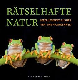 Rätselhafte Natur von Köthe,  Dr. Rainer