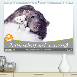 Rattenscharf und zuckersüß (Premium, hochwertiger DIN A2 Wandkalender 2020, Kunstdruck in Hochglanz) von Nilson,  Thorsten