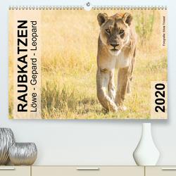 Raubkatzen – Löwe, Gepard, Leopard (Premium, hochwertiger DIN A2 Wandkalender 2020, Kunstdruck in Hochglanz) von Trüssel,  Silvia