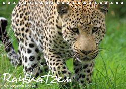 Raubkatzen (Tischkalender 2019 DIN A5 quer) von Nocke,  Benjamin
