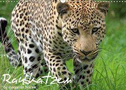 Raubkatzen (Wandkalender 2019 DIN A3 quer)