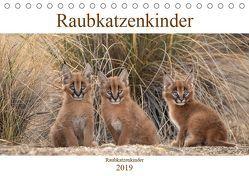 Raubkatzenkinder (Tischkalender 2019 DIN A5 quer) von Vollborn,  Marion