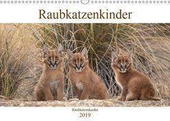 Raubkatzenkinder (Wandkalender 2019 DIN A3 quer) von Vollborn,  Marion