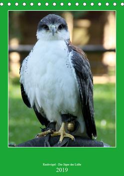 Raubvögel – Die Jäger der Lüfte (Tischkalender 2019 DIN A5 hoch) von Klatt,  Arno