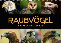 Raubvögel – lautlose Jäger (Wandkalender 2018 DIN A3 quer) von Bleicher,  Renate