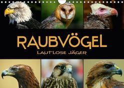Raubvögel – lautlose Jäger (Wandkalender 2018 DIN A4 quer) von Bleicher,  Renate
