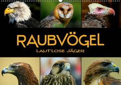 Raubvögel – lautlose Jäger (Wandkalender 2020 DIN A2 quer) von Bleicher,  Renate