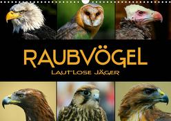 Raubvögel – lautlose Jäger (Wandkalender 2020 DIN A3 quer) von Bleicher,  Renate