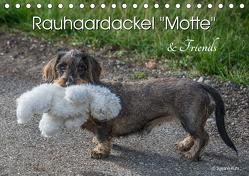 Rauhaardackel Motte & Friends (Tischkalender 2019 DIN A5 quer) von Kuhr,  Susann