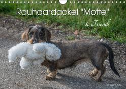 Rauhaardackel Motte & Friends (Wandkalender 2019 DIN A4 quer) von Kuhr,  Susann
