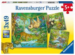 Ravensburger Kinderpuzzle 05180 – Im Urwald – 3×49 Teile Puzzle für Kinder ab 5 Jahren