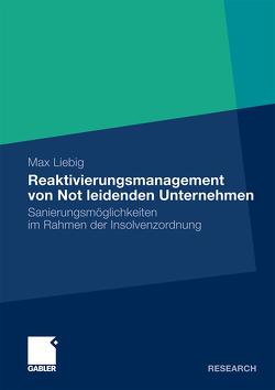 Reaktivierungsmanagement von Not leidenden Unternehmen von Liebig,  Max