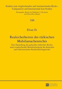 Realsicherheiten des türkischen Mobiliarsachenrechts von Er,  Elvan
