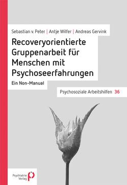 Recoveryorientierte Gruppenarbeit für Menschen mit Psychoseerfahrungen von Gervink,  Andreas, von Peter,  Sebastian, Wilfer,  Antje
