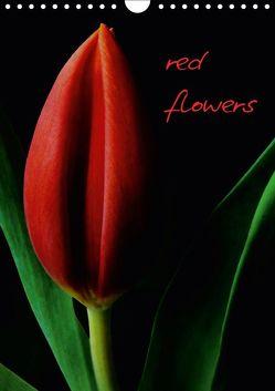 red flowers (Wandkalender 2019 DIN A4 hoch) von Otto,  Anja