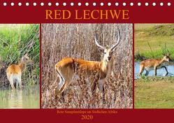 RED LECHWE Rote Sumpfantilope im Südlichen Afrika (Tischkalender 2020 DIN A5 quer) von Fraatz,  Barbara