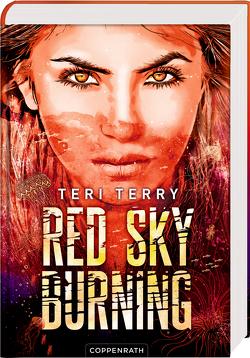 Red Sky Burning (Bd. 2) von Ströle,  Wolfram, Terry,  Teri