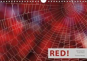 RED! (Wandkalender 2018 DIN A4 quer) von Herzog,  Thomas, www.bild-erzaehler.com