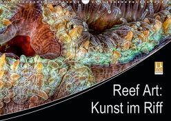 Reef Art – Kunst im Riff (Wandkalender 2019 DIN A3 quer) von Jager,  Henry