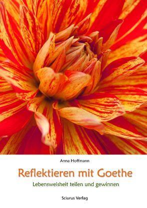 Reflektieren mit Goethe von Hoffmann,  Anna