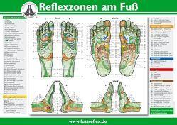 Reflexzonen am Fuß (A2) von Marquardt,  Hanne