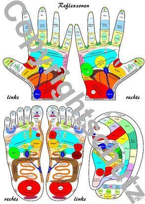 Reflexzonenübersicht – Füße, Hände und Ohr von Aeckersberg,  Tanja