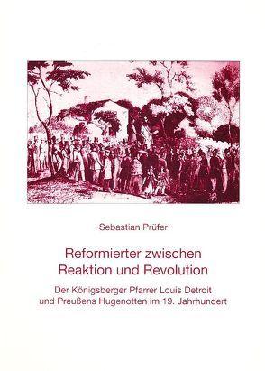 Reformierter zwischen Reaktion und Revolution von Prüfer,  Sebastian