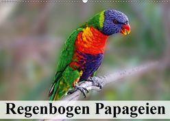 Regenbogen Papageien (Wandkalender 2019 DIN A2 quer) von Stanzer,  Elisabeth