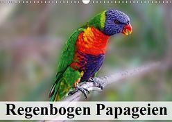 Regenbogen Papageien (Wandkalender 2019 DIN A3 quer) von Stanzer,  Elisabeth