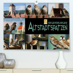 Regensburger Altstadtspatzen (Premium, hochwertiger DIN A2 Wandkalender 2021, Kunstdruck in Hochglanz) von Bleicher,  Renate
