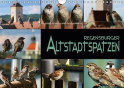Regensburger Altstadtspatzen (Wandkalender 2018 DIN A4 quer) von Bleicher,  Renate