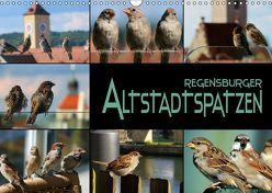 Regensburger Altstadtspatzen (Wandkalender 2019 DIN A3 quer)