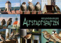 Regensburger Altstadtspatzen (Wandkalender 2019 DIN A4 quer) von Bleicher,  Renate