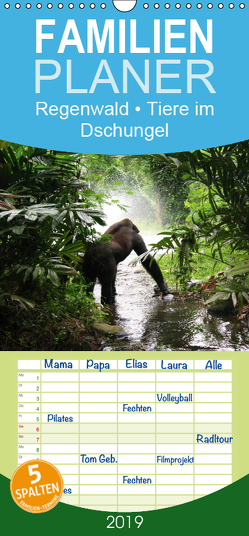 Regenwald • Tiere im Dschungel – Familienplaner hoch (Wandkalender 2019 , 21 cm x 45 cm, hoch) von Stanzer,  Elisabeth