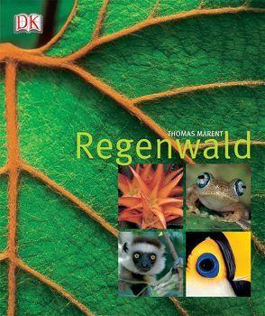 Regenwald von Marent,  Thomas