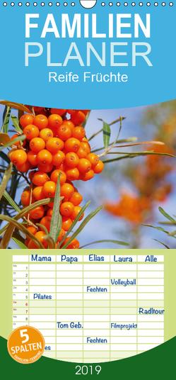 Reife Früchte – Familienplaner hoch (Wandkalender 2019 , 21 cm x 45 cm, hoch) von LianeM