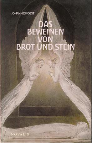 Reihe Geisteswissenschaft / Das Beweinen von Brot und Stein von Voigt,  Johannes