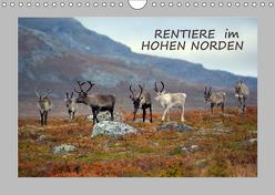 Rentiere im Hohen Norden (Wandkalender 2019 DIN A4 quer) von GUGIGEI