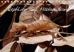Reptilien auf Madagaskar (Tischkalender 2020 DIN A5 quer) von Trapp,  Benny