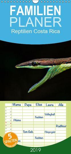 Reptilien Costa Rica – Familienplaner hoch (Wandkalender 2019 , 21 cm x 45 cm, hoch) von Dummermuth,  Stefan
