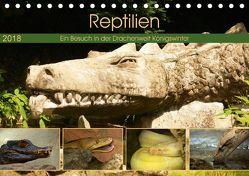 Reptilien. Ein Besuch in der Drachenwelt Königswinter (Tischkalender 2018 DIN A5 quer) von Stoerti-md,  k.A.