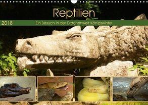 Reptilien. Ein Besuch in der Drachenwelt Königswinter (Wandkalender 2018 DIN A3 quer) von Stoerti-md,  k.A.