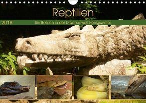 Reptilien. Ein Besuch in der Drachenwelt Königswinter (Wandkalender 2018 DIN A4 quer) von Stoerti-md,  k.A.
