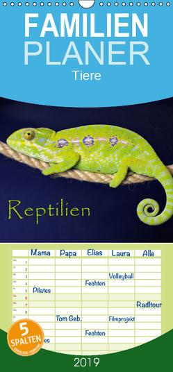 Reptilien – Familienplaner hoch (Wandkalender 2019 <strong>21 cm x 45 cm</strong> hoch) von Sushi,  der