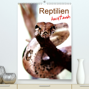 Reptilien hautnah (Premium, hochwertiger DIN A2 Wandkalender 2020, Kunstdruck in Hochglanz) von Mosert,  Stefan