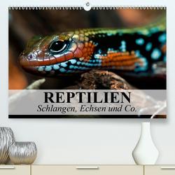 Reptilien Schlangen, Echsen und Co. (Premium, hochwertiger DIN A2 Wandkalender 2021, Kunstdruck in Hochglanz) von Stanzer,  Elisabeth